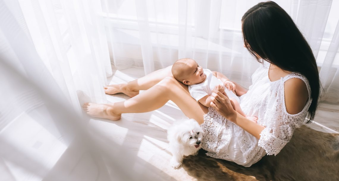 Tips to Introduce a New Baby and a Dog