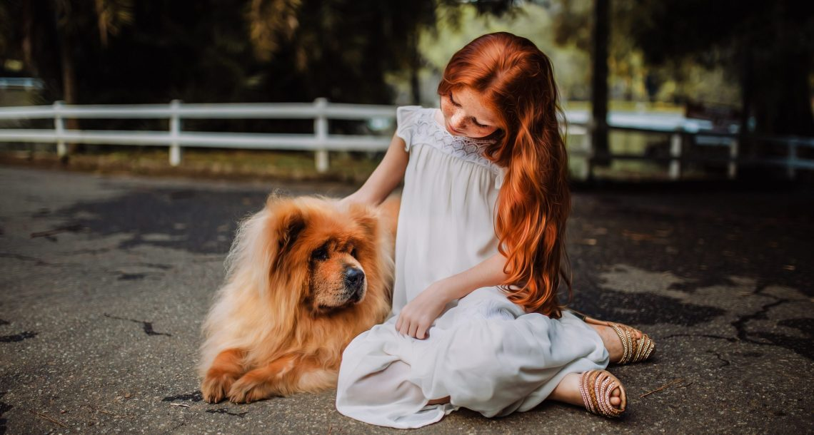 Tips for Helping Your Child Overcome a Dog Bite